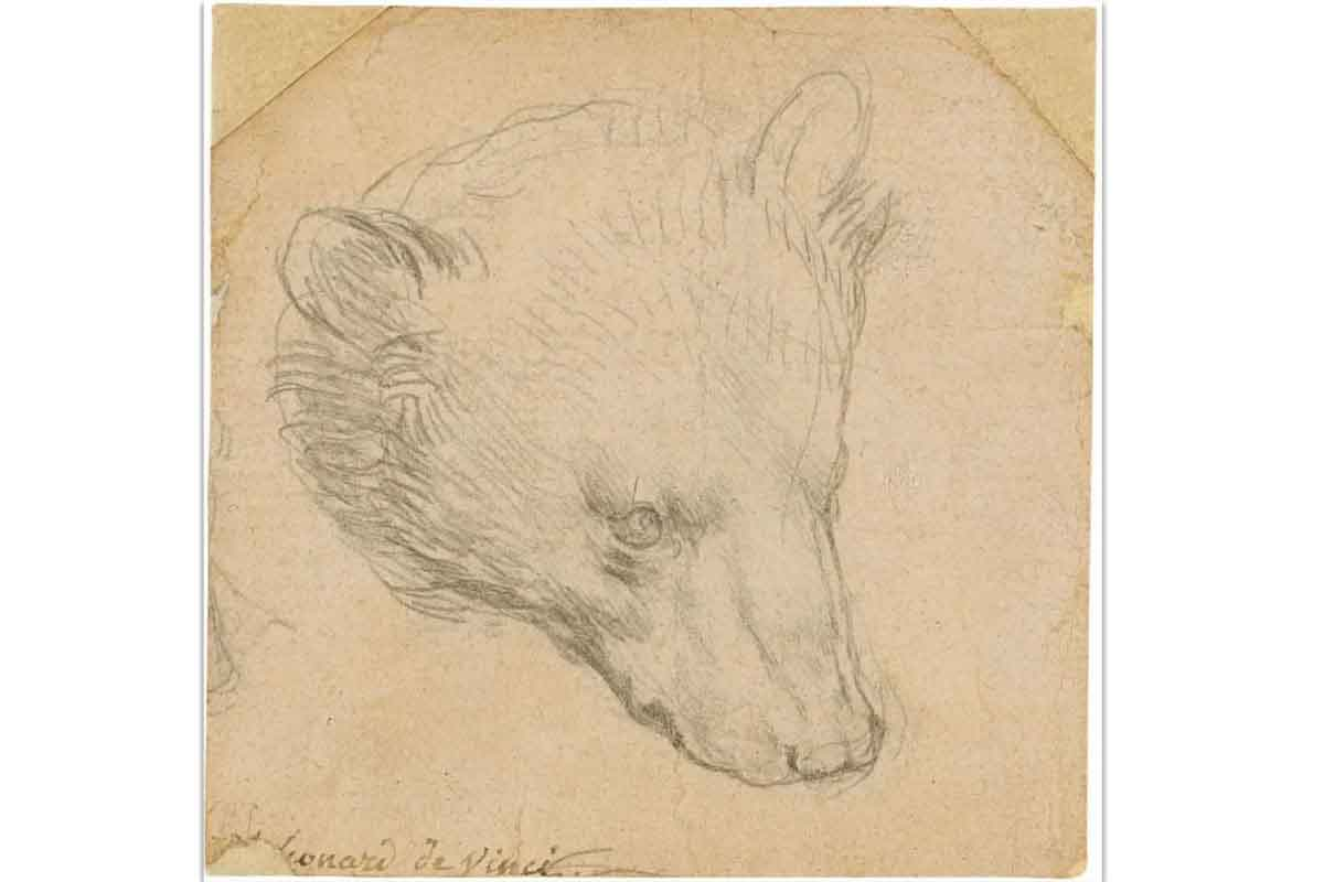 "MAESTRO DI ANATOMIA. ""Head of a Bear"" is just one of the remaining eight sketches that display da Vinci's love for art and nature. Photo Courtesy by Pinterest."
